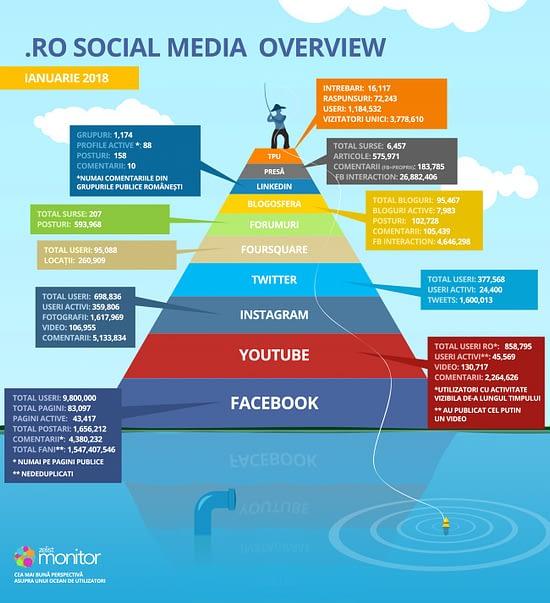 Social Media Overview Ianuarie