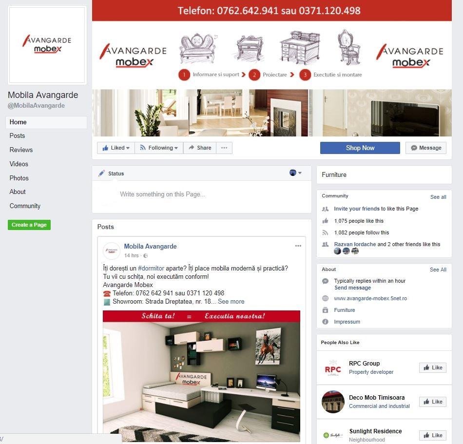 Promovare online Avangarde
